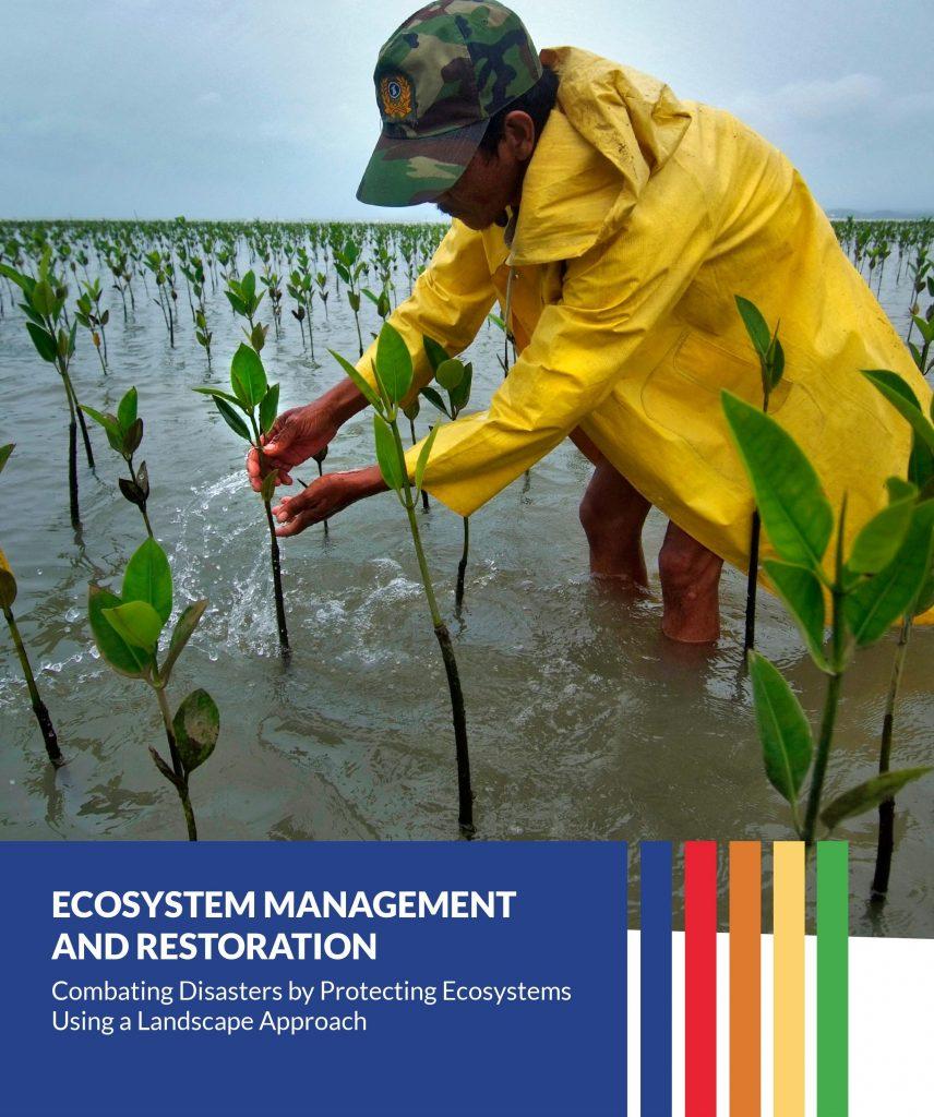 Ecosystem Management & Restoration in Camarines Sur, Compostela Valley, Agusan del Sur